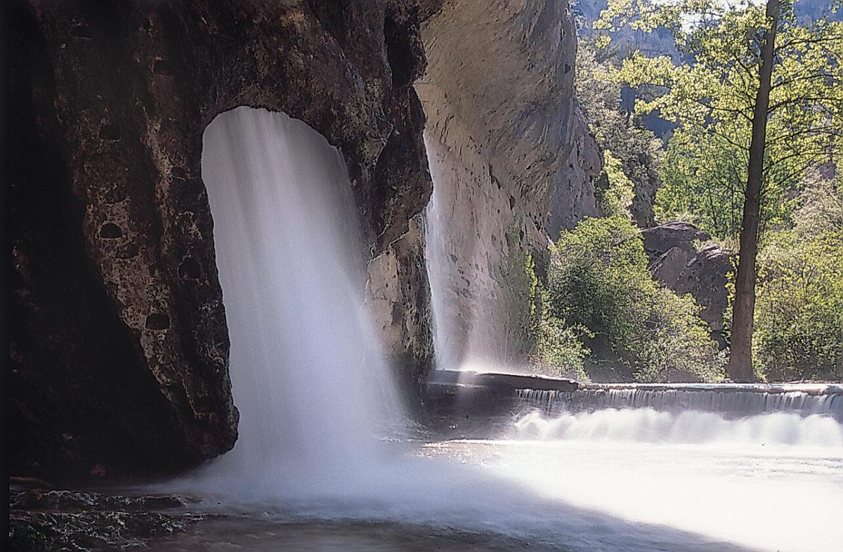 Pitarque springs
