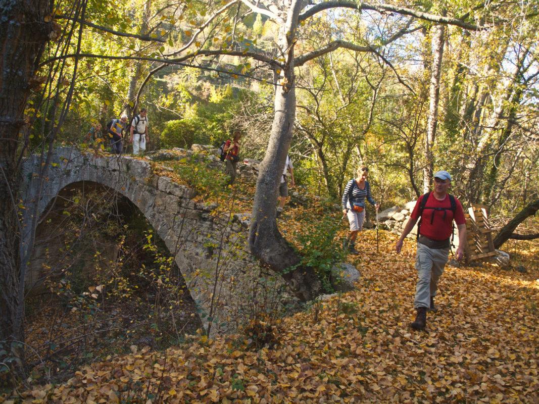 Autumn climate landscape