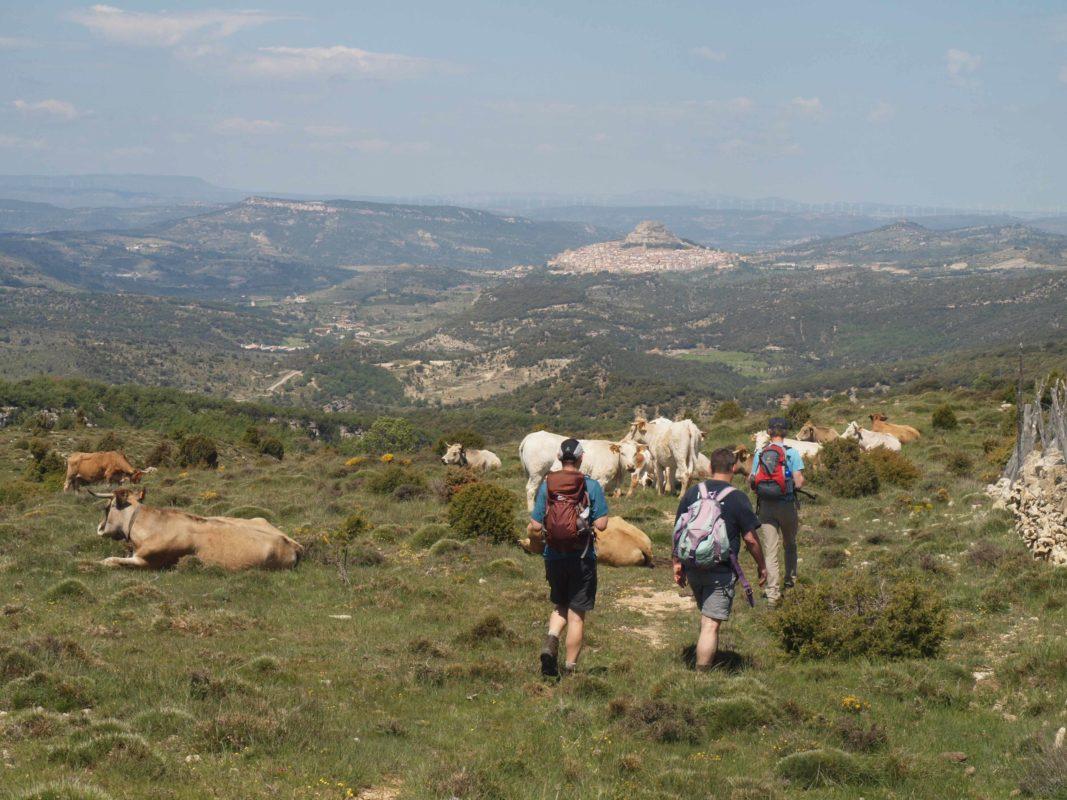 Vallibona to Morella