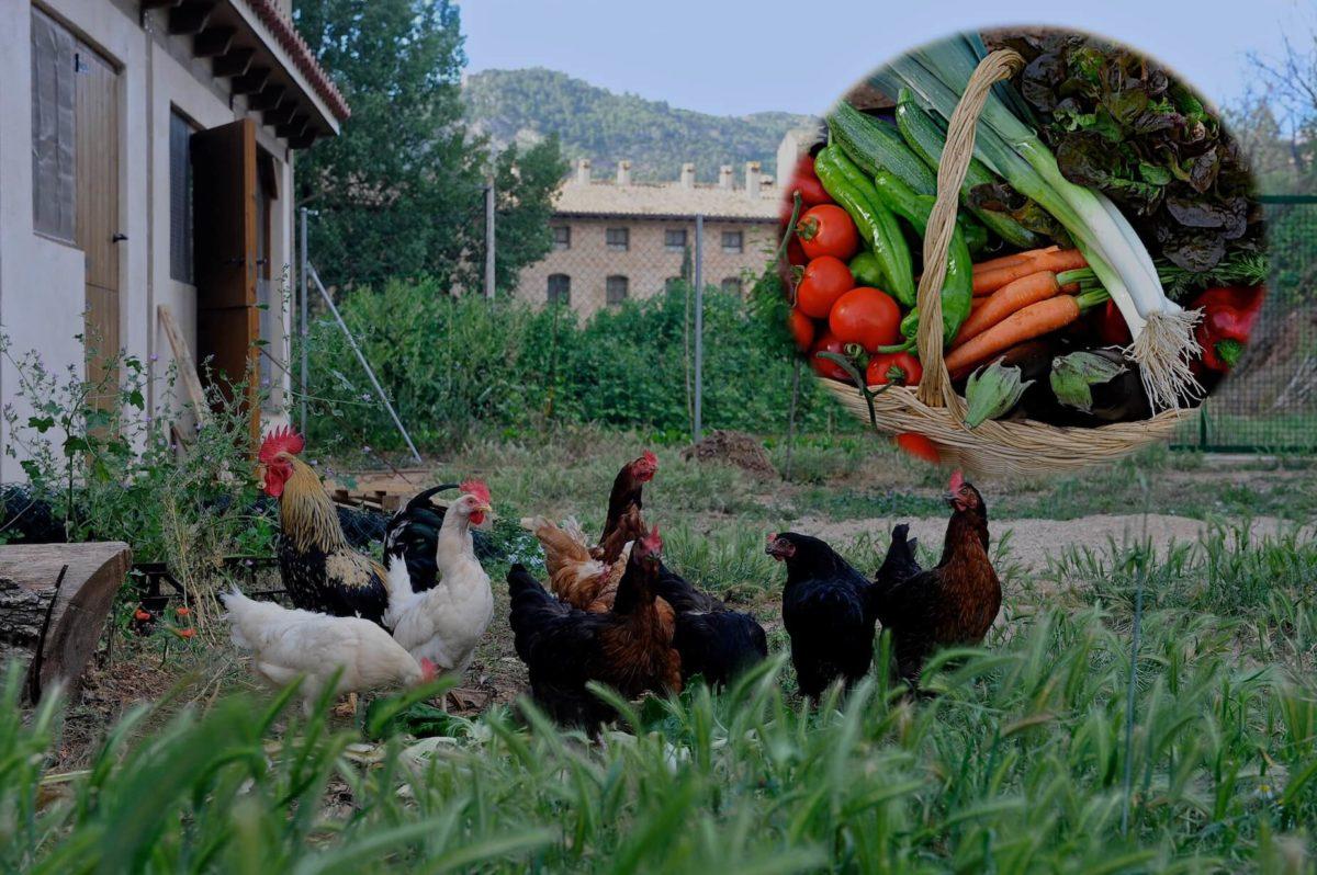 farmhouse holidays Spain